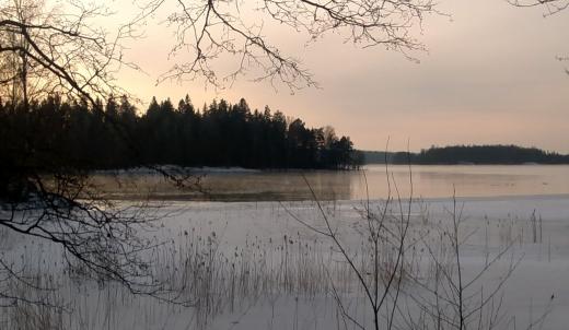 Båtvik