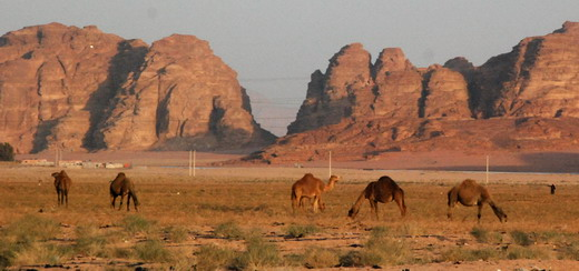 Wadi Rum megérkezés